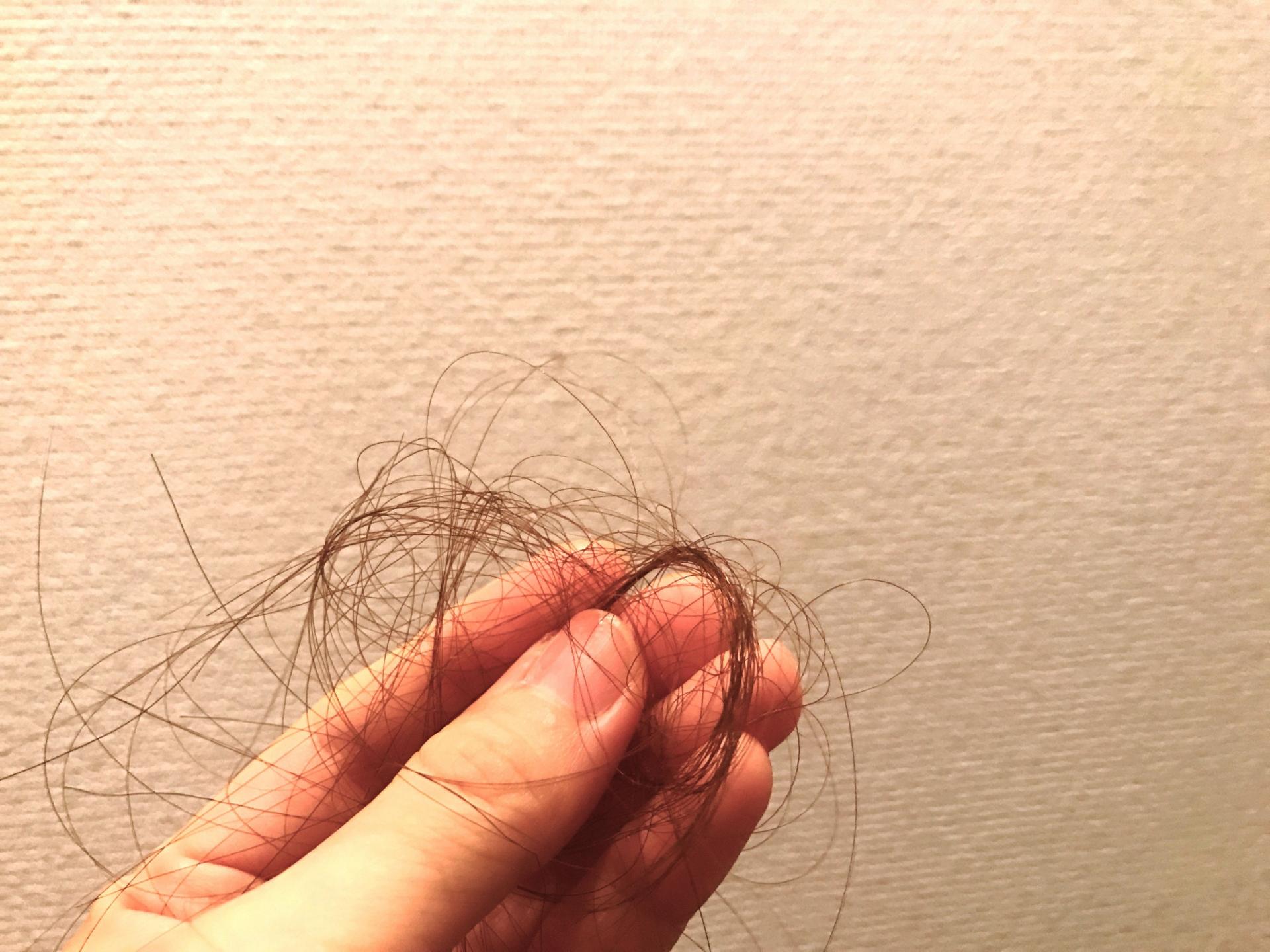 秋は抜け毛の季節?!サムネイル
